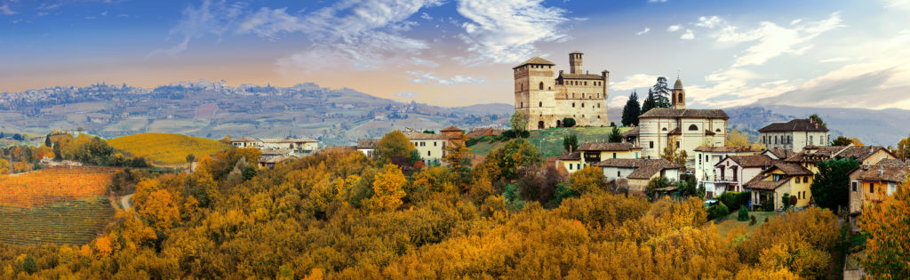 Castello di Grinzane and village - one of the most famous vine r